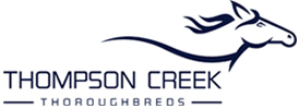 THOMPSON CREEK THOROUGHBREDS
